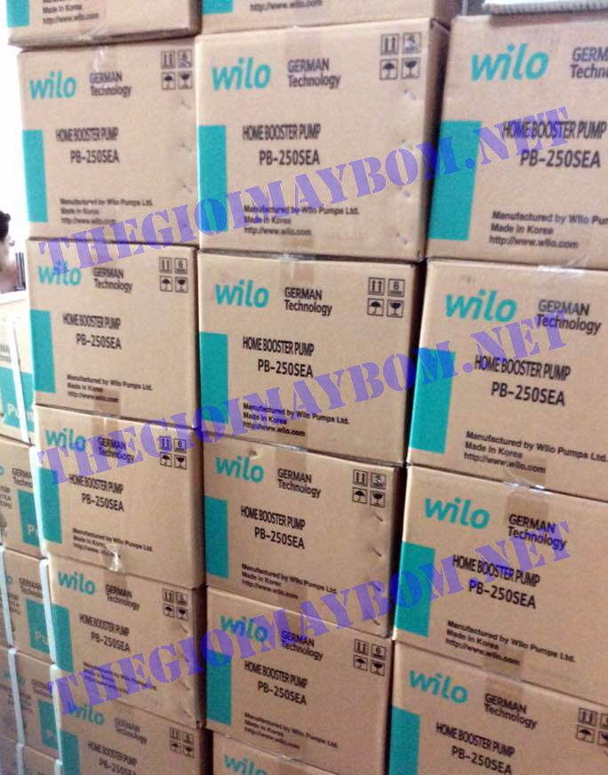 Máy bơm tăng áp điện tử Wilo PB 250SEA chính hãng